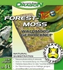 Dragon - Forest Moss n.5L tiili