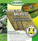 Dragon - Forest Moss 3-pack n.5L tiili