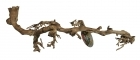 Lucky Reptile - Sandblasted Grapevine L n.50-70cm