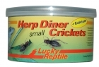 Lucky Reptile - Herp Diner - Crickets small 35g