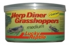 Lucky Reptile - Herp Diner - Grasshoppers medium 35g