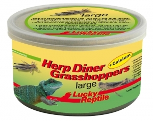 Lucky Reptile - Herp Diner - Grasshoppers Large 35g