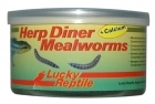 Lucky Reptile - Herp Diner - Mealworms 35g