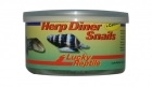 Lucky Reptile - Herp Diner - Snails 35g