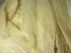 Palm Tree Bark bleached 3kpl