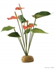 Exo Terra - Anthurium Bush