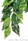 Exo Terra - Ficus Medium ( Silk )